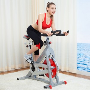 SF-B901 pro indoor cycling bike