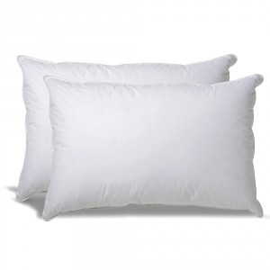 Set of 2 Down Alternative Hypoallergenic Pillow