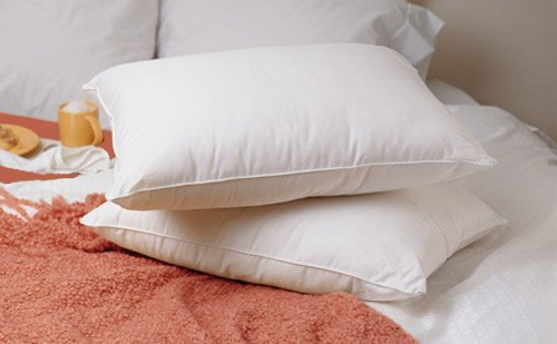 Premium 100% White Goose Down Firm Pillow