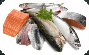 types of Oily Fish