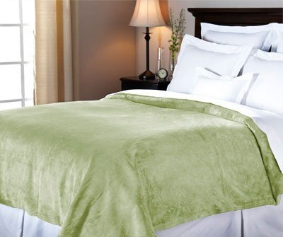 Sunbeam Luxurious Velvet Plush Queen Heated Blanket