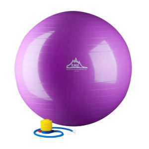 Black Mountain 2000lb Static Strength Exercise Stability Ball