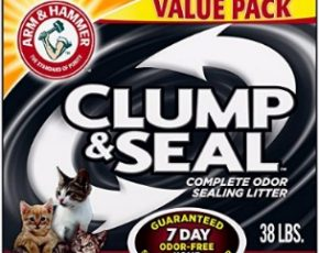 Finding the Cat Litter that Can Help with Odor Control