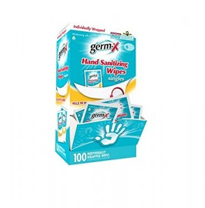 Germ-X Antibacterial Soft Hand Wipes Singles