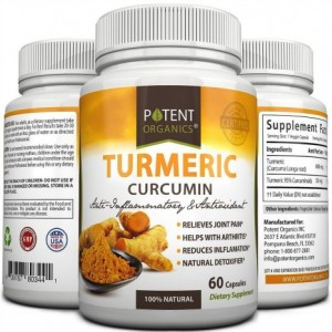 Potent Organics Turmeric Curcumin Supplement